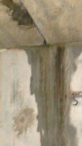 Das ist im Anbau. Im trockenem Zustand sieht die Wand nur etwas dreckig aus ...